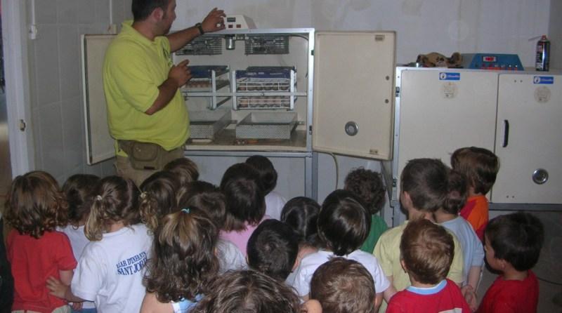 esplais i escoles a la granja Can Castellví
